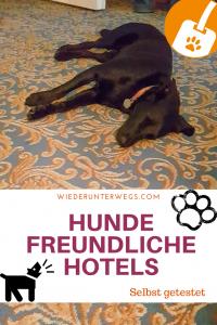 Urlaub mit Hund Hundefreundliche Hotels in Österreich