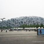 Aus dem Nest gefallen: Im Olympiastadion in Peking