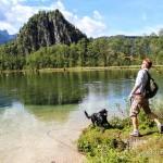 Hundetauglicher Genuss am Almfluss