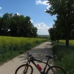 Einsame Radwege im Weinviertel