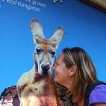 Tour in die Blue Mountains und Abschied von Sydney