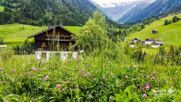 Kärnten Reiseblogger SlowFood Mai2016 Web (29 Von 206)