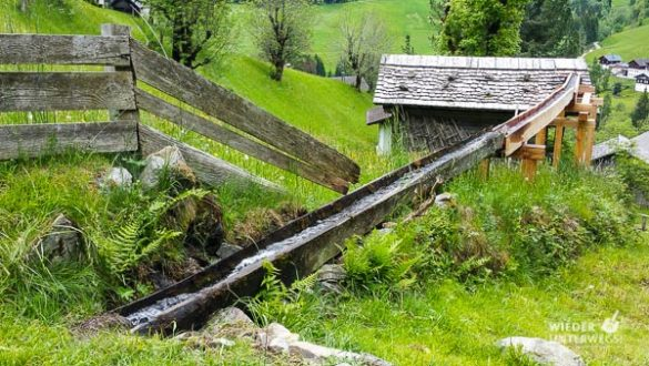 Kärnten Reiseblogger SlowFood Mai2016 Web (37 Von 206)