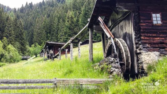 Kärnten Reiseblogger SlowFood Mai2016 Web (38 Von 206)