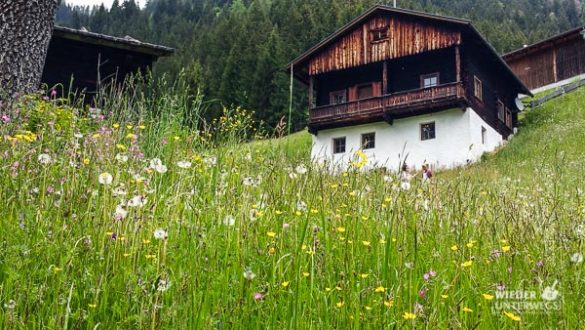 Kärnten Reiseblogger SlowFood Mai2016 Web (43 Von 206)