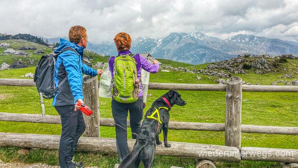 Wandern mit hund: Velika Planika