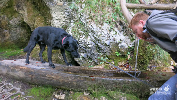 kolpa-kroatien-pag-camping-roz_sept2016_web-84-von-88