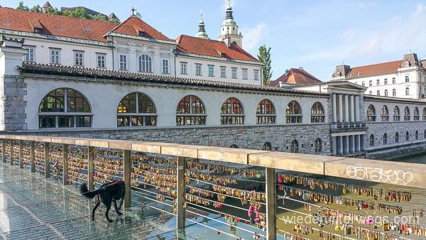 Ljubljana_Slowenien_Mai2016_WEB (110 von 250)