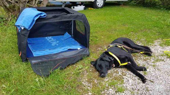 Lunzer See Ybbs Camping Web (124 Von 171)