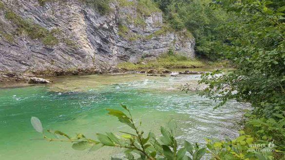 Lunzer See Ybbs Camping Web (78 Von 171)