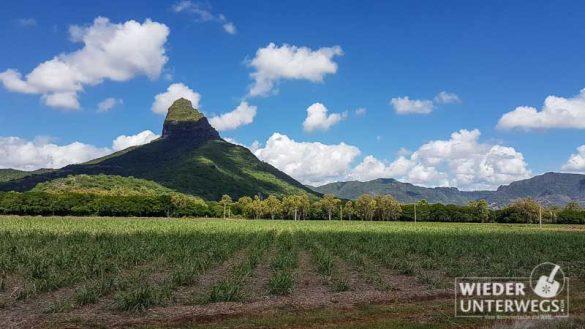 Mauritius 2016 Lakaz Chamarel Tamassa Lux Web 119 Von 478