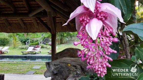 Mauritius 2016 Lakaz Chamarel Tamassa Lux Web 206 Von 478