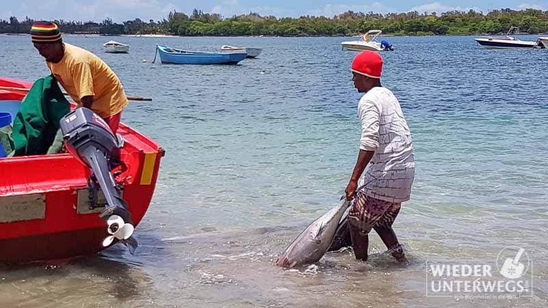 mauritius_2016_lakaz-chamarel_tamassa_lux_web-96-von-478