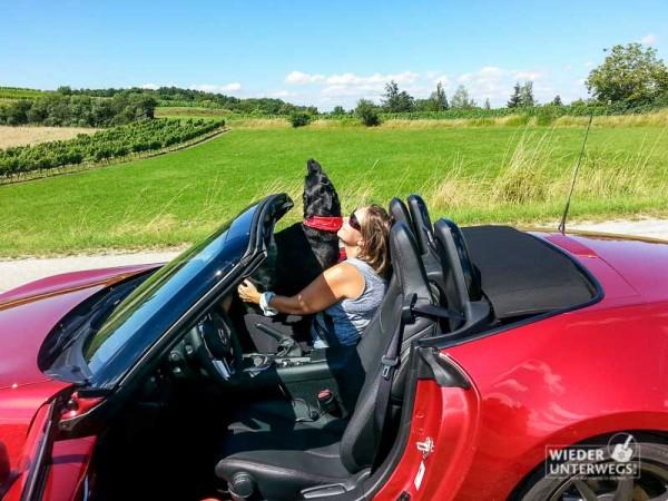 MazdaMX5_Wachau_web_Juli2016 (125 von 132)