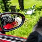 Mit Hund und Cabrio in die Sommerfrische