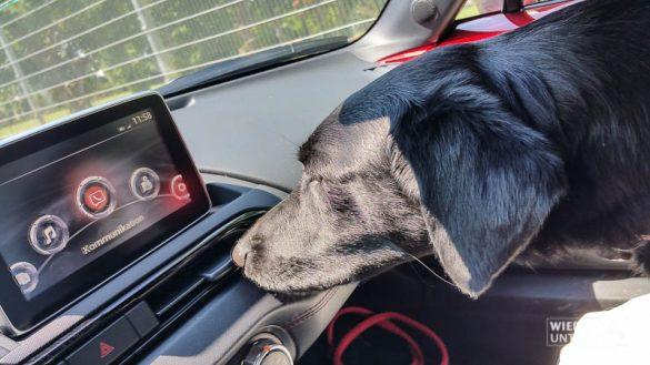 MazdaMX5 WienerAlpen Web Juli2016 (8 Von 113)