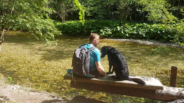 Mendlingtal mit Hund