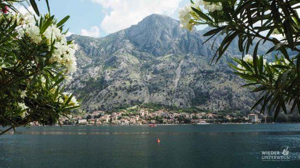 Montenegro Tipps Kotor Lovcen WEB (246 Von 448)
