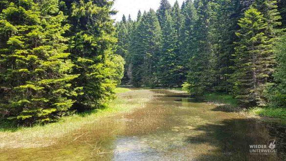 Montenegro Tipps Nationalparks WEB (158 Von 342)