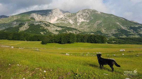 Montenegro Tipps Nationalparks WEB (226 Von 342)