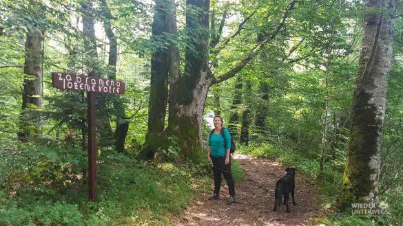 Montenegro Tipps Nationalparks WEB (38 Von 342)