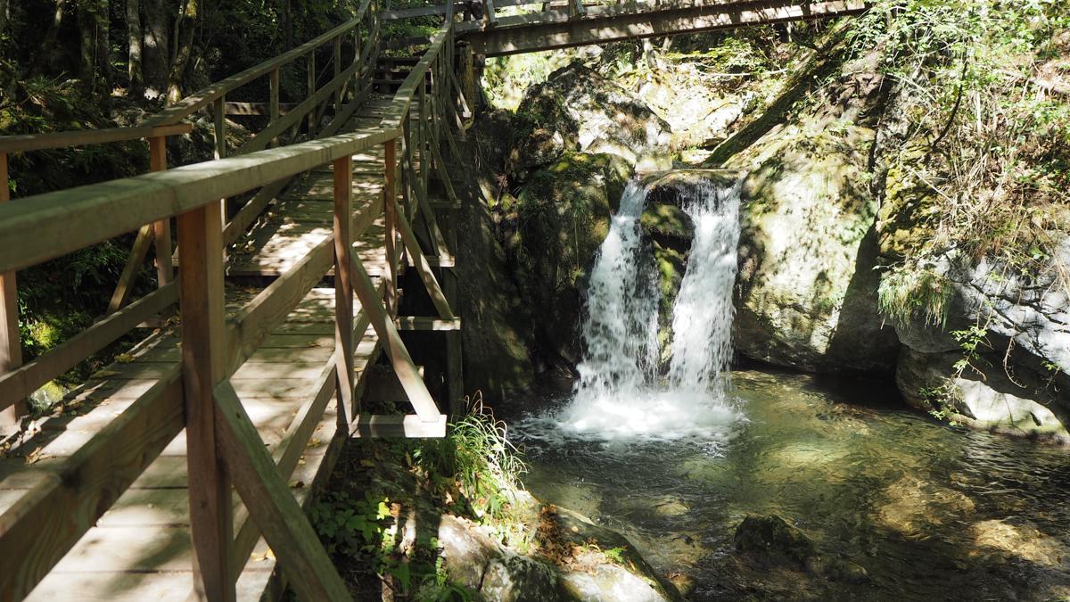 Myrafälle Wasserfall Leiter