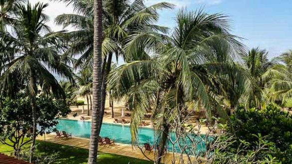 Negombo 2015 (1 Von 29)