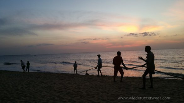 Negombo 2015 (22 Von 29)