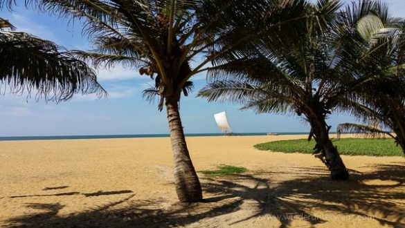 Negombo 2015 (23 Von 29)