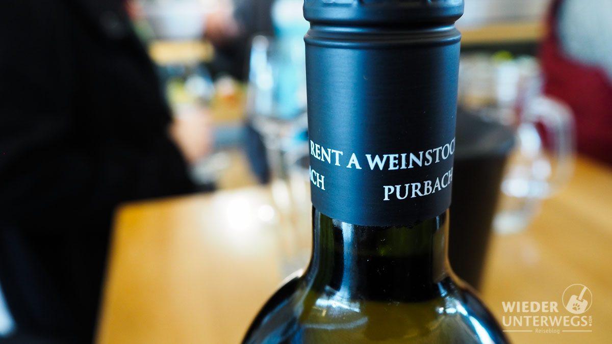 winetasting neusiedlersee