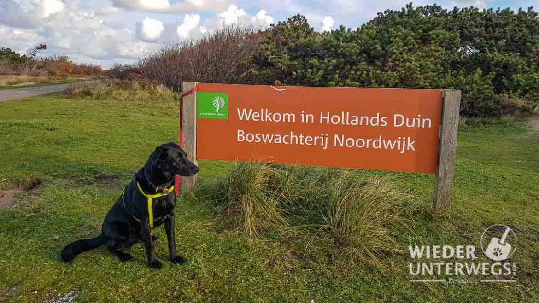 Noordwijk Web (393 Von 596)