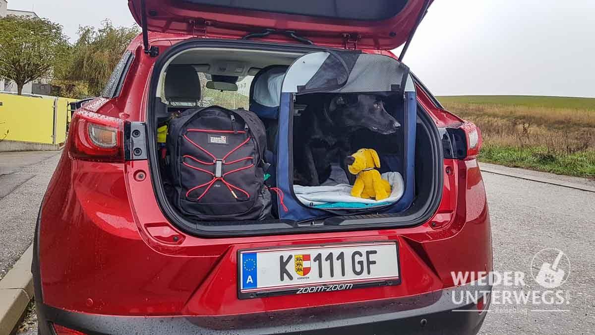 Urlaub mit Hund Mazda voll