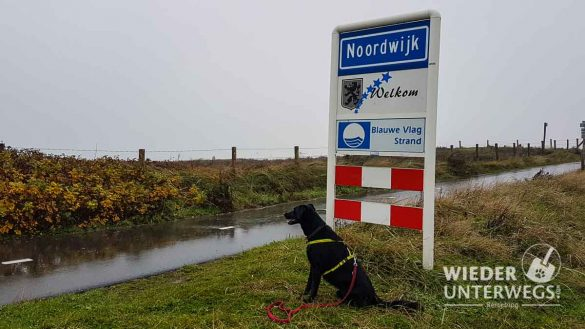 Noordwijk Web (92 Von 596)