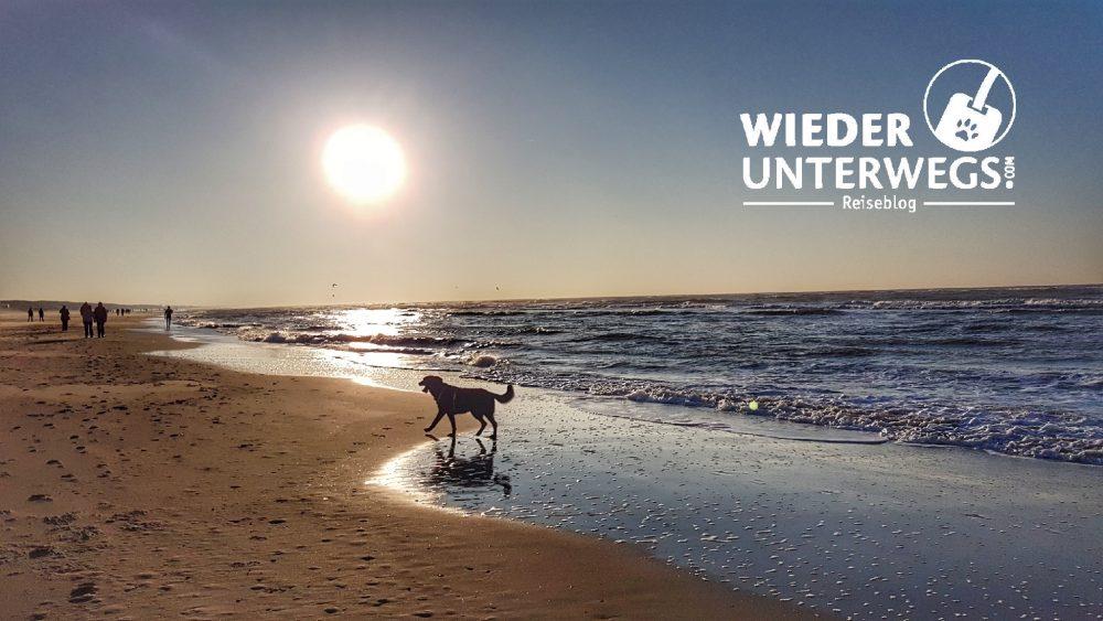 Urlaub mit Hund Wiederunterwegs Reiseblog an der Nordsee