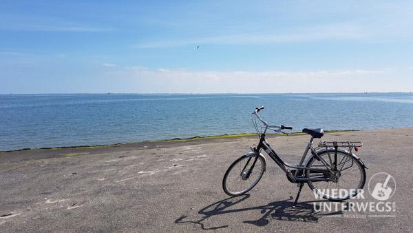 Rad auf Texel Holland