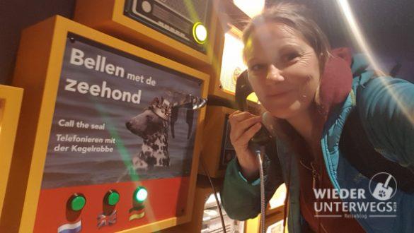 Texel Web Optimiert 2017 380