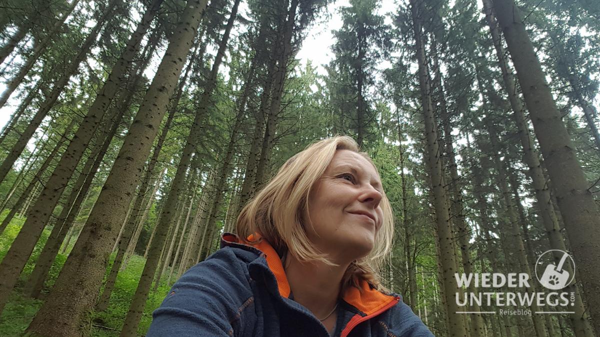 Waldness®: Was kann der Wald? Ein Selbsttest.