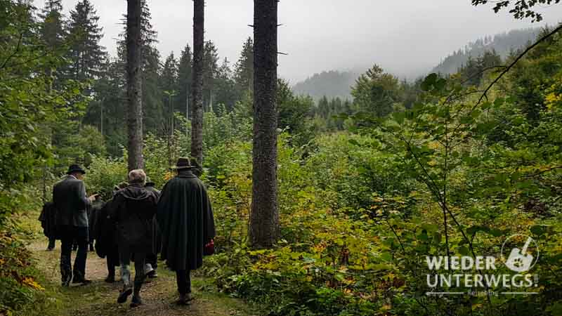 Waldbaden Waldness Wald Spaziergang