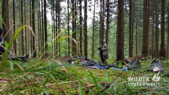 Waldness Almtal September 2017 Web 800px (132 Von 381)