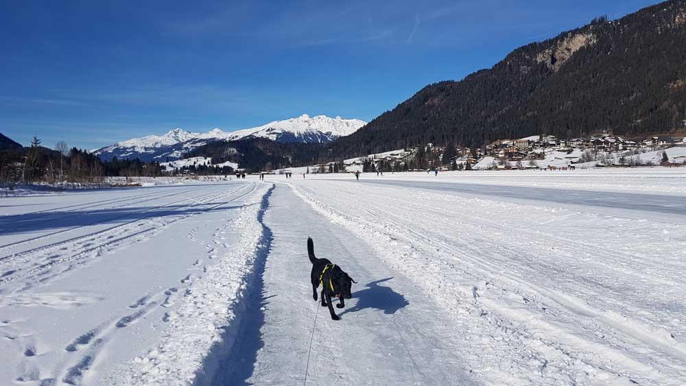 winterwanderweg weissensee