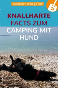 Urlaub mit Hund Reiseblog Camping Tipps