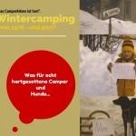 Wintercamping mit Hund – was für hartgesottene Camper.
