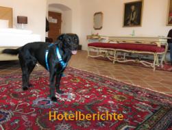 Urlaub mit Hund: hotelberichte hundehotels