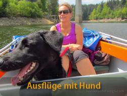 Urlaub mit Hund: hotelberichte