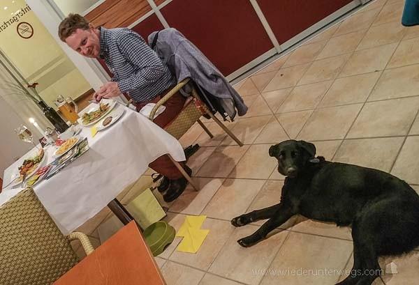 kartause Gaming Abendessen mit Hund