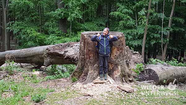 Naturpark Sparbach 2017 Web 28