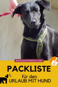 Urlaub mit Hund Packliste Wiederunterweg Reiseblog