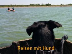 Urlaub mit Hund: reisen mit hund