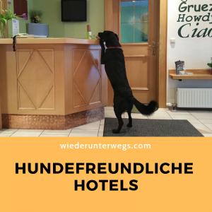 Urlaub mit Hund Reiseblog Wiederunterwegs